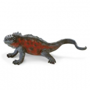 Iguana delle Galapagos cm. 21