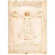 Leonardo da Vinci - L'uomo Vitruviano 1000 pezzi
