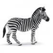 Zebra cm. 9